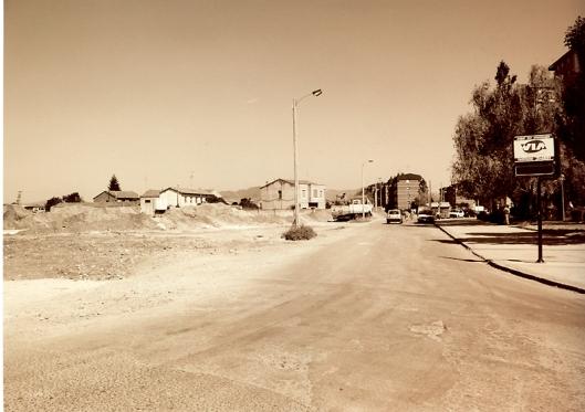 Camino de Anduva 1993